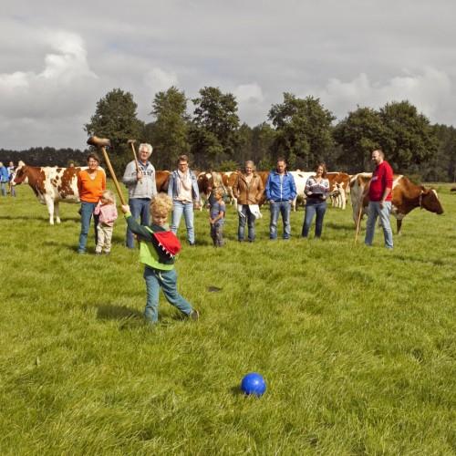 Boerengolf tijdens familiedag in Drenthe.