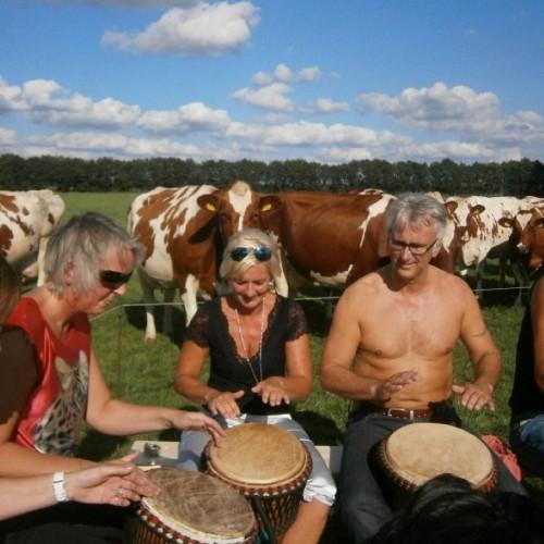 Workshop Djembe spelen in Drenthe.